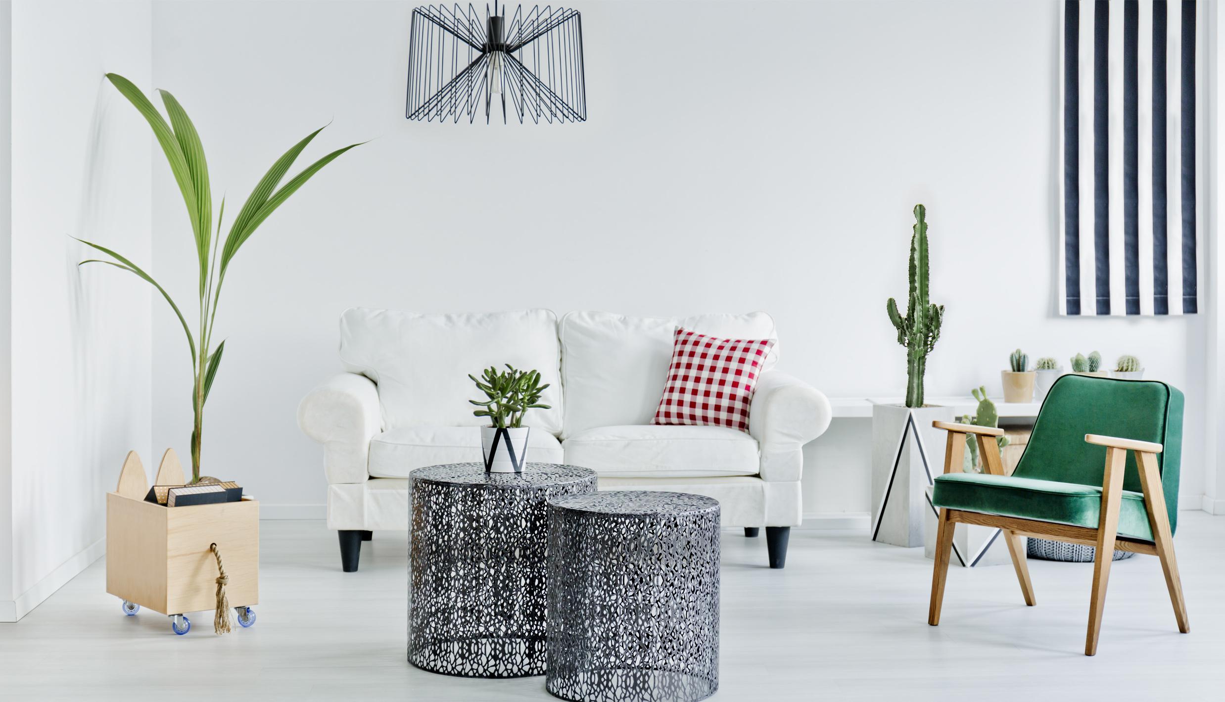 furniture-bg2